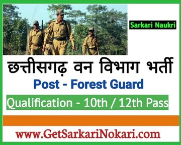 cg forest gov in