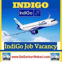 IndiGo Airlines Jobs Vacancy in Delhi:Airlines Jobs in Delhi
